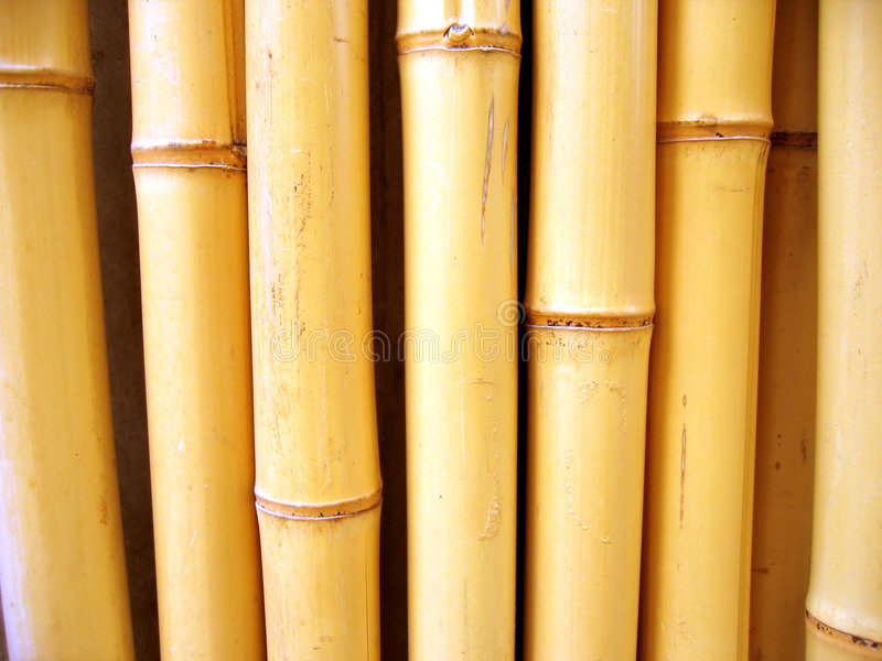 Varas De Bambu Foto de Stock Royalty Free