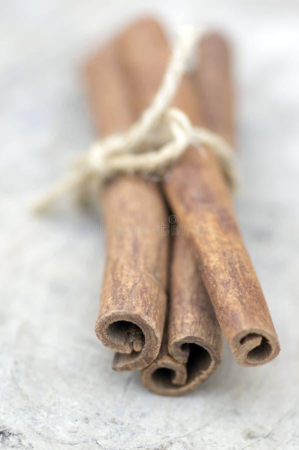 Varas de canela cruas frescas na tabela de madeira, varas amarradas com guitas naturais de uma juta fotografia de stock royalty free
