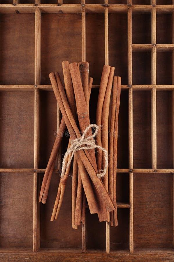 Varas de canela na caixa de madeira velha amarrada imagem de stock royalty free