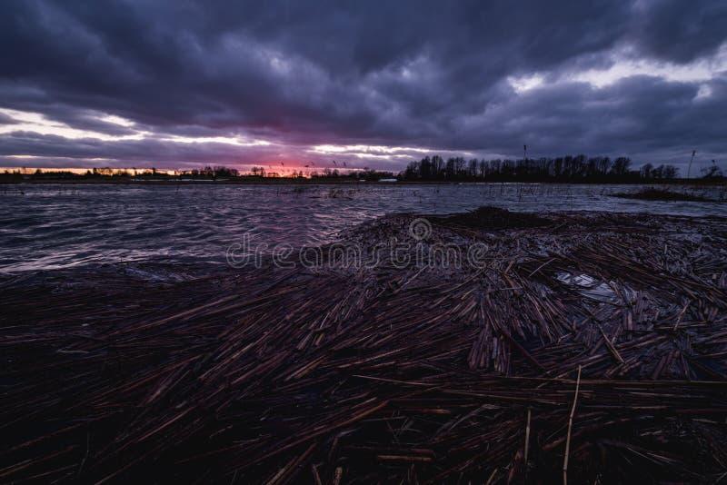 Varas de lingüeta quebradas do bastão que flutuam sobre a água do rio em uma vista do céu nebuloso escuro do por do sol imagem de stock