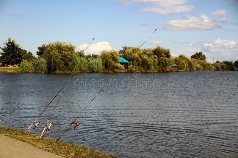 Varas de pesca com os sinos moldados no lago fotos de stock royalty free