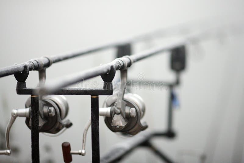 Varas de pesca da carpa fotos de stock