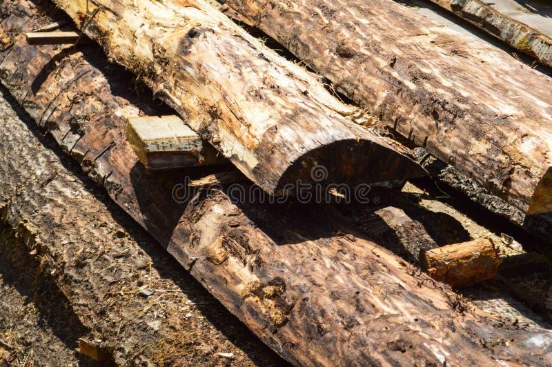 Varas, placas, logs de madeira de madeira connosco e serragem em ver industrial da serração das árvores Fundo, textura fotografia de stock royalty free