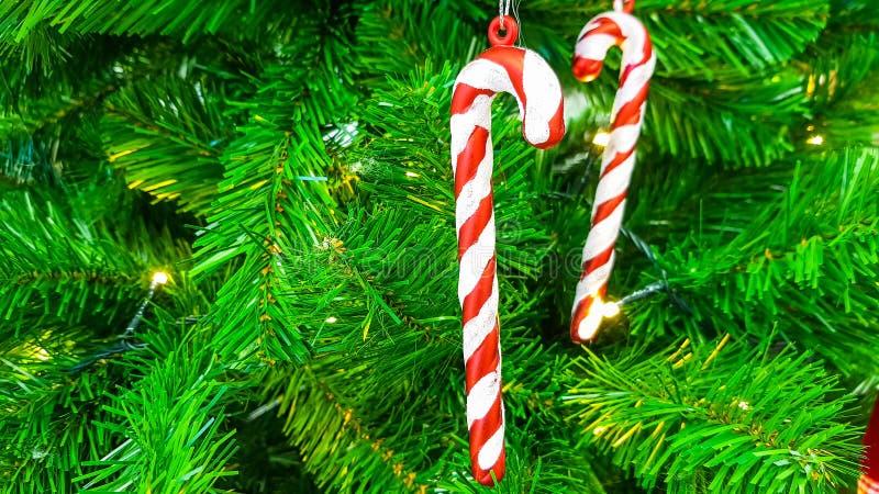 Varas vermelhas e brancas doces dos doces que penduram em uma refeição matinal da árvore de Natal artificial plástica verde imagem de stock royalty free