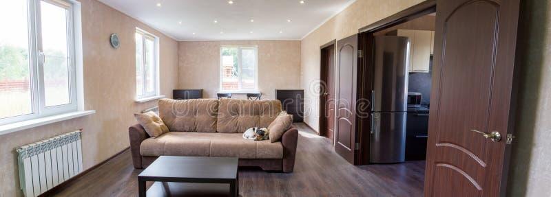 Vardagsrum av ett landshus sova för soffahund fotografering för bildbyråer