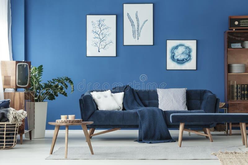Vardagsrum med soffan och TV royaltyfri foto