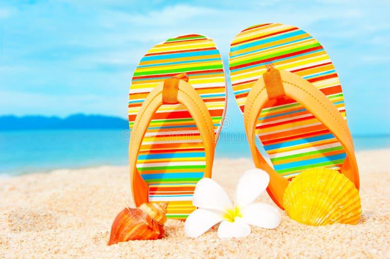 Vare las sandalias en las vacaciones de verano y las vacaciones arenosas co de la costa imagen de archivo libre de regalías