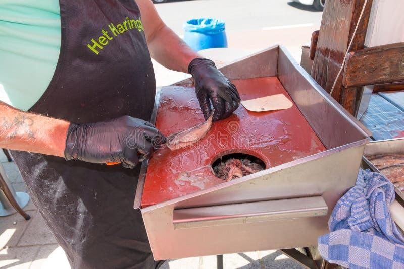 Varejista dos peixes que limpa arenques novos da estação para comer em sua tenda da loja fotos de stock