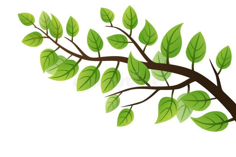 Varenblad met groene bladeren vector illustratie
