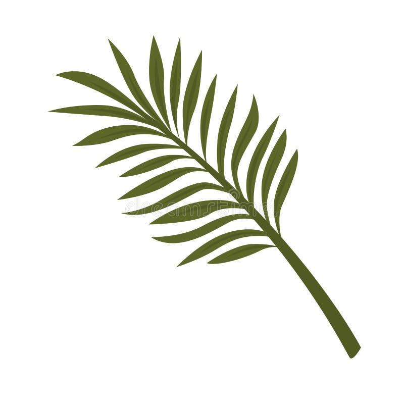 Varenblad op witte achtergrond wordt geïsoleerd die Tropische Installatie vector illustratie