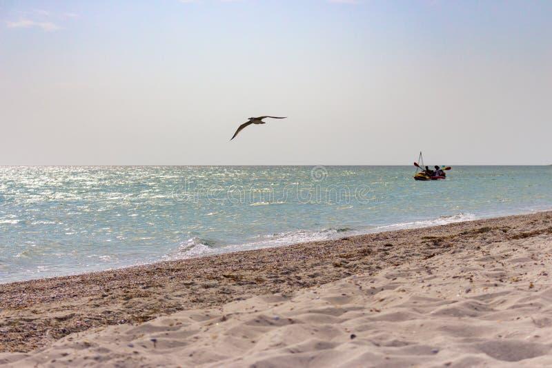 Varende boot met vliegende zeemeeuwvoorgrond en strand met wit zand Visserij en tracel concept royalty-vrije stock afbeelding