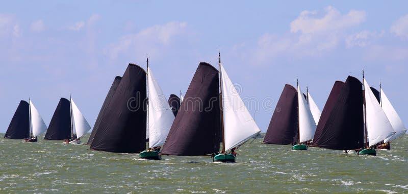 Varende schepen in de jaarlijkse concurrentie royalty-vrije stock foto's