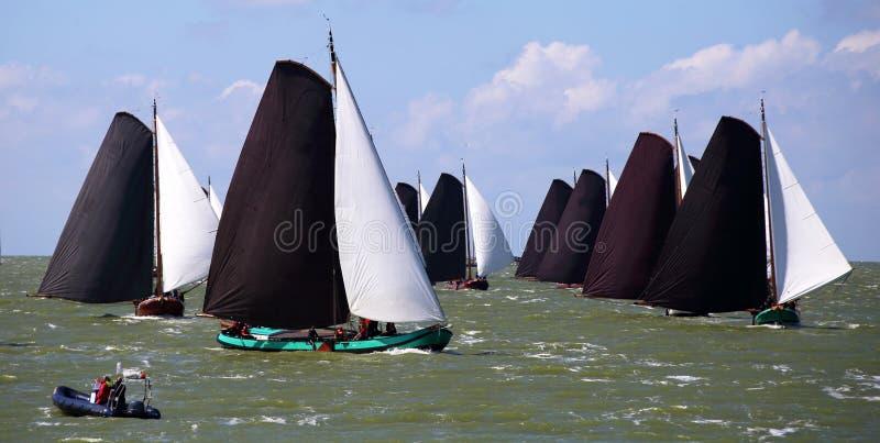 Varende schepen in de jaarlijkse concurrentie royalty-vrije stock foto