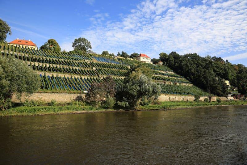 Varende Schepen van (Tsjechische) D??ín door Hrensko, Smilka, Slechte Shandau, Koenigstein, Wehlen, Pirna in Dresden, Duitsland stock afbeelding