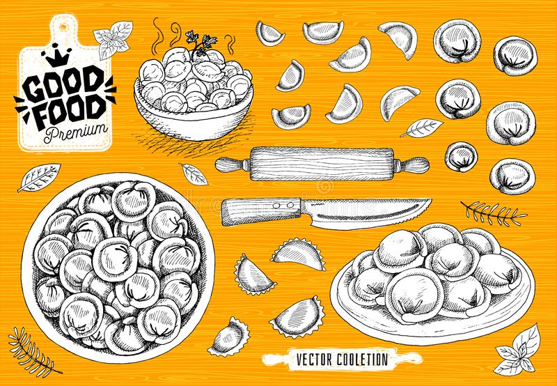 Vareniki. Pelmeni. Meat dumplings. Food. Cooking. National dishes. Products from the dough and meat. vector illustration