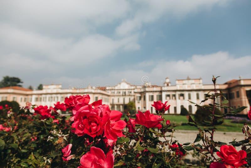 Varese OUTUBRO DE 2018 ITÁLIA - flores contra o palácio de Estense, ou Palazzo Estense foto de stock royalty free
