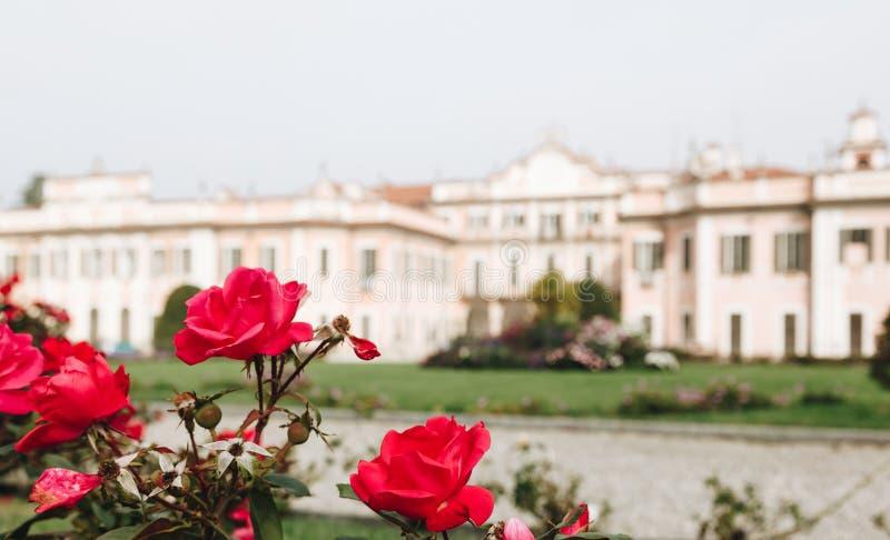 Varese OUTUBRO DE 2018 ITÁLIA - flores contra o palácio de Estense, ou Palazzo Estense imagens de stock royalty free