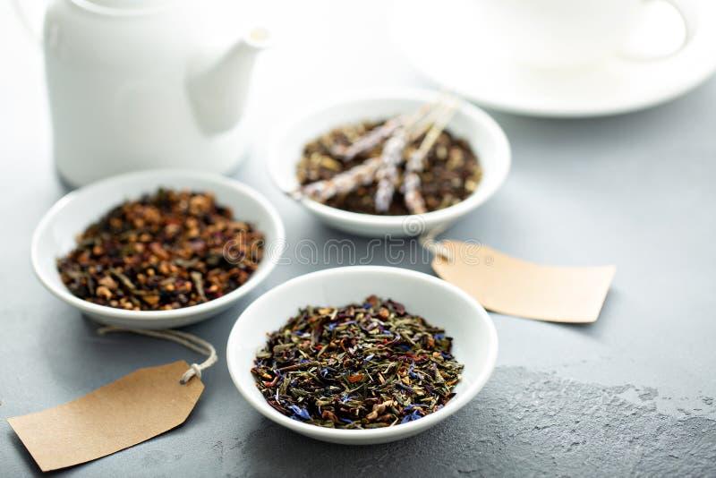 Variété assortie de thés de feuilles mobiles photos libres de droits