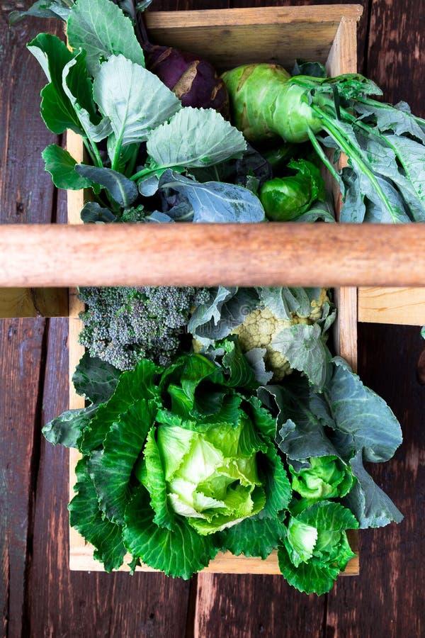 Variété de choux dans le panier en bois sur le fond brun Vue supérieure de récolte image libre de droits