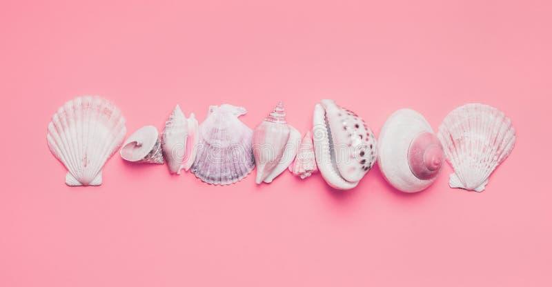 Variété de coquilles de mer sur le fond rose en pastel, vue supérieure Disposition cr?ative Configuration plate Concept d'?t? photos stock