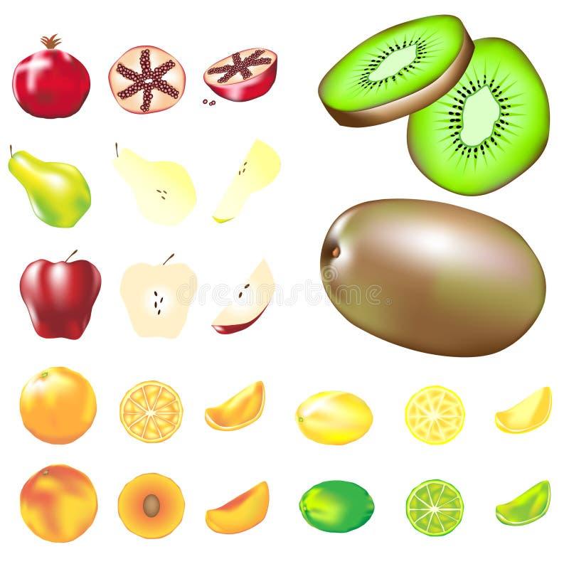 Variété de fruits dans l'illustration de vecteur illustration stock