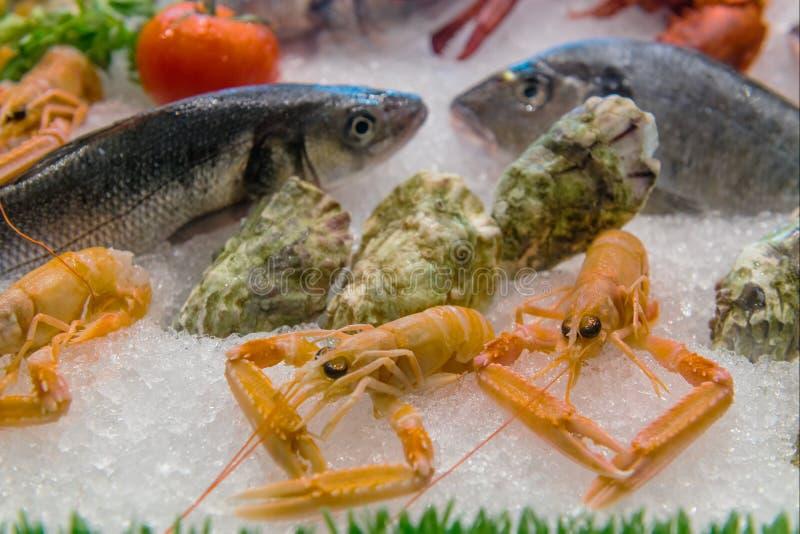 Variété de fruits de mer en glace photographie stock libre de droits