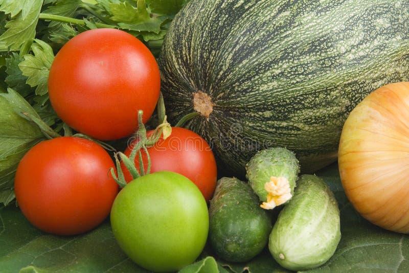 Variété de légumes image stock