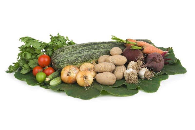 Variété de légumes. photos libres de droits