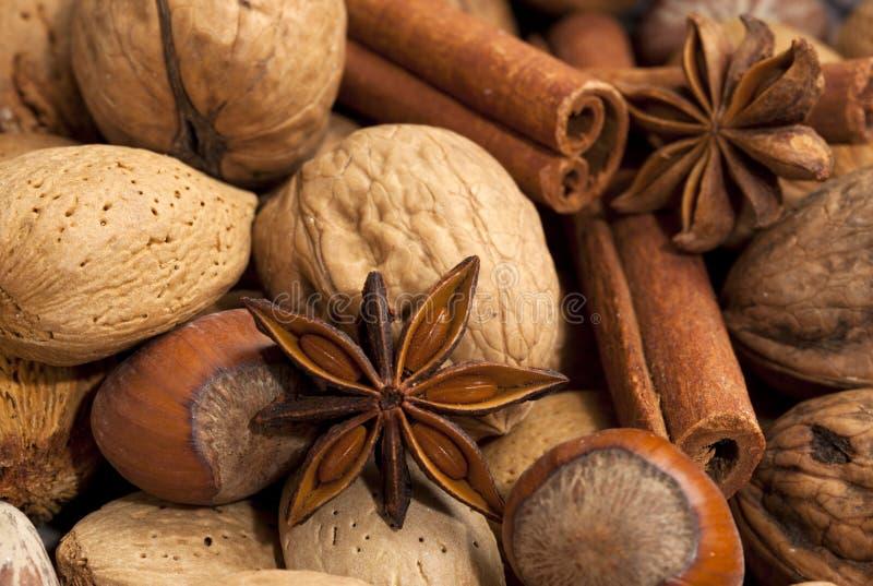 Variété de noix et d'épices photo stock