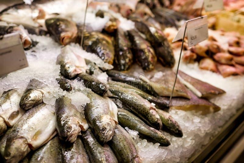 Variété de poissons de mer sur le compteur photos stock