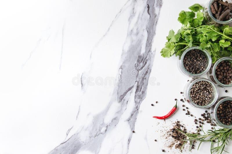 Variété de poivrons noirs photographie stock