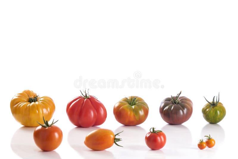 Variété de tomates d'héritage images libres de droits