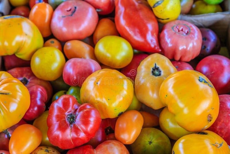 Variété de tomates d'héritage photos libres de droits