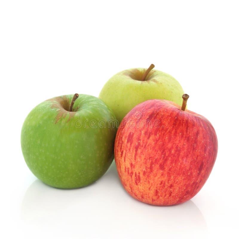 Variétés d'Apple images libres de droits