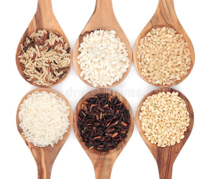 Variétés de riz photos stock