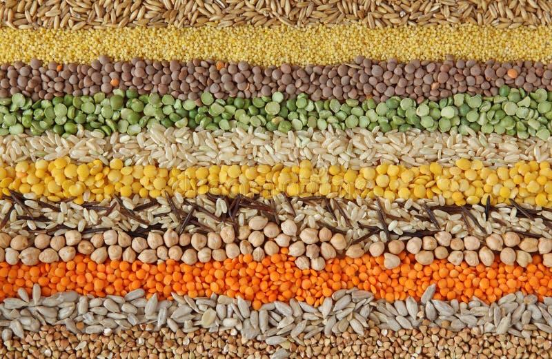 Vari cereali e fotografia stock