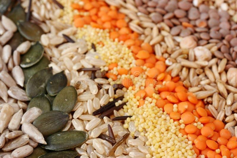 Vari cereali e immagine stock