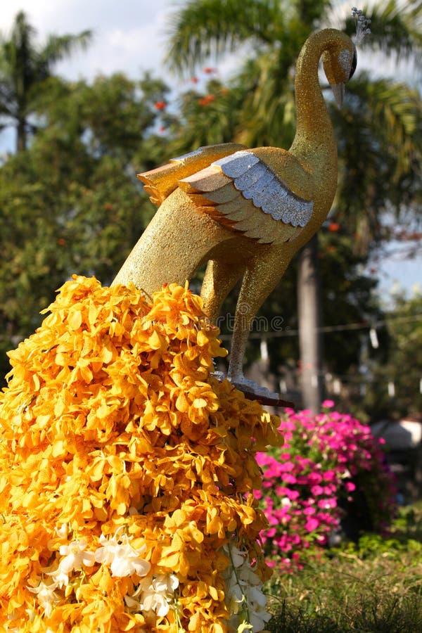Vari fiori gialli luminosi in composizione, Tailandia fotografia stock libera da diritti