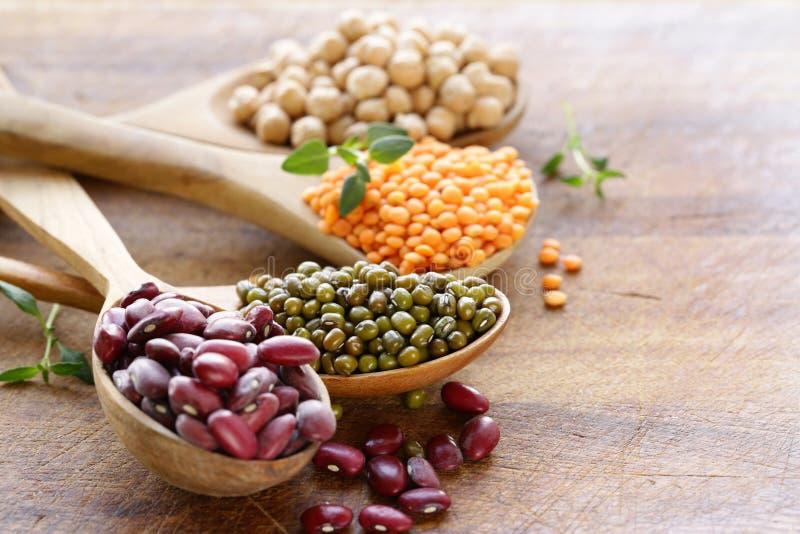 Vari generi di legumi - fagioli, lenticchie, ceci, mung fotografia stock libera da diritti