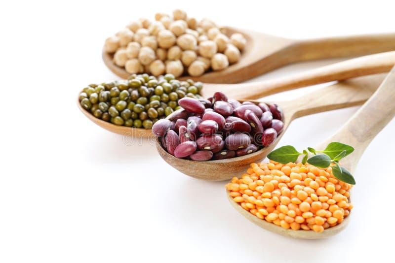 Vari generi di legumi - fagioli, lenticchie, ceci, mung fotografia stock