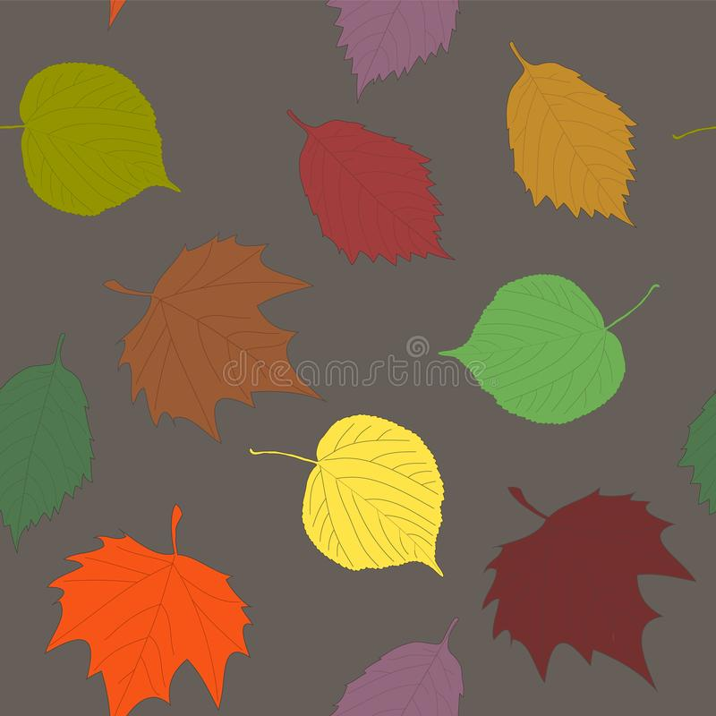 Vari ontano del tiglio del modello delle foglie di autunno ed acero senza cuciture le royalty illustrazione gratis