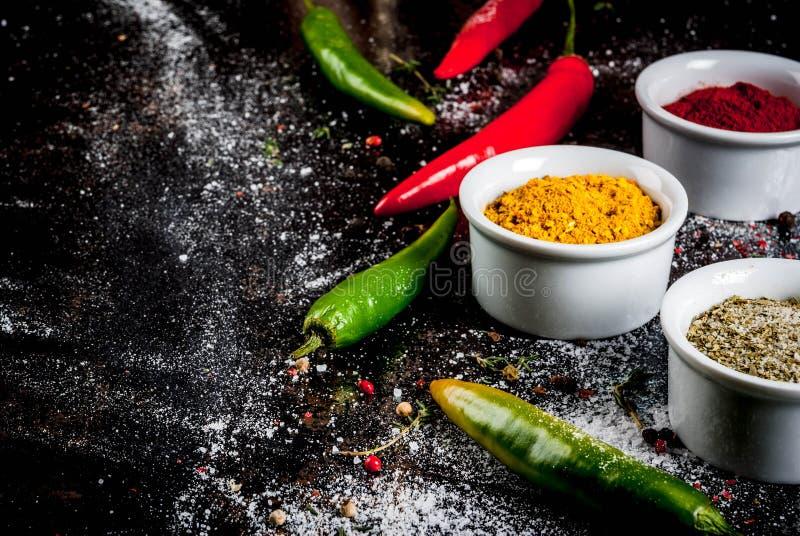 Vari spezie e condimenti immagine stock
