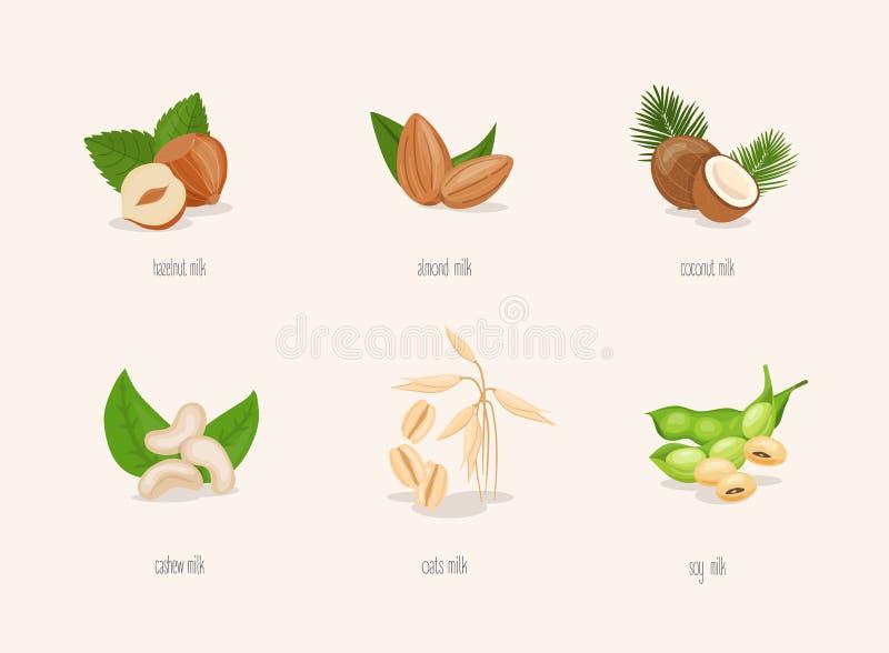 Variação diferente do leite baseado planta Grupo das porcas: avelã, coco, amêndoa, feijão da soja, aveia, caju ilustração do vetor