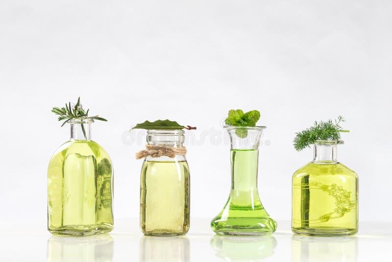 Varia bottiglia degli oli essenziali ed essenze delle piante fresche fotografia stock