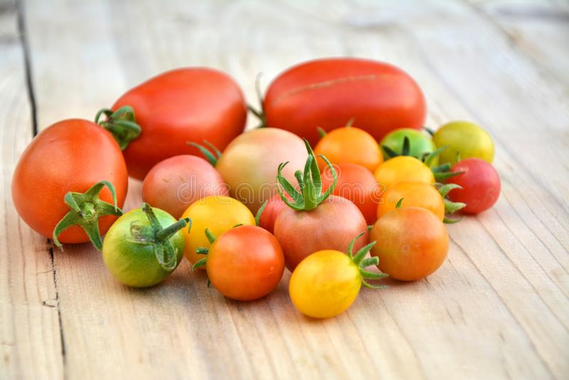 Varia ciliegia variopinta e pomodori di Roma fotografie stock