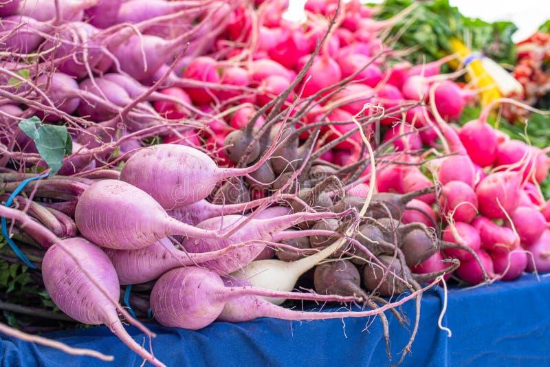 Variaciones frescas del rábano en un mercado local de los granjeros colorido fotos de archivo
