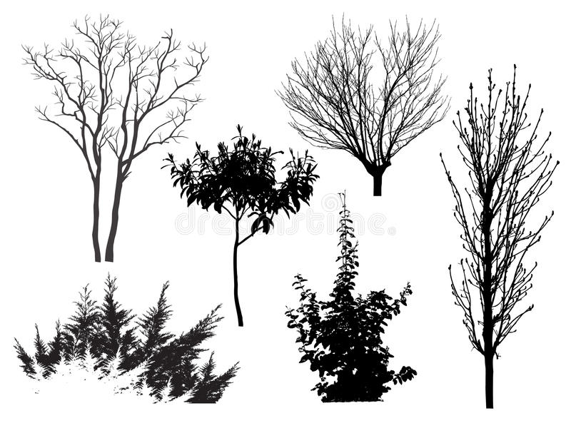 Variantes de los árboles ilustración del vector
