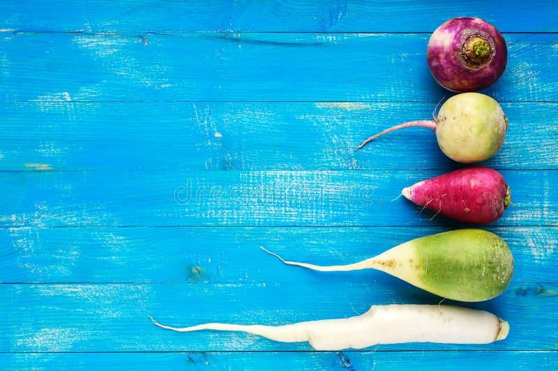 Varias clases de daikon del rábano, rojo chino, verde en un fondo de madera del zafiro azul Ingrediente útil de las vitaminas par fotos de archivo