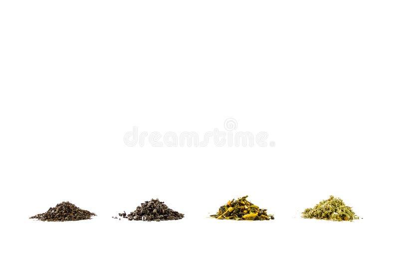 Varias clases de hojas de té ennegrecen diverso fondo blanco de la colección verde fotografía de archivo