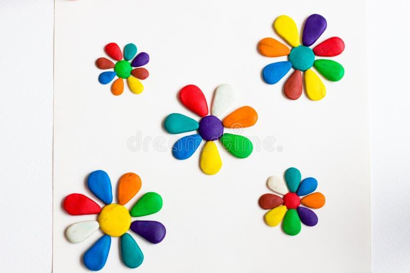 Varias flores con los pétalos coloridos de diversos colores mienten en un fondo blanco fotografía de archivo